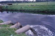 Por contaminación de agua, aplican multas