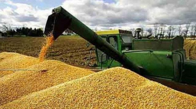 La Comisión Nacional de Valores controlará el mercado de granos