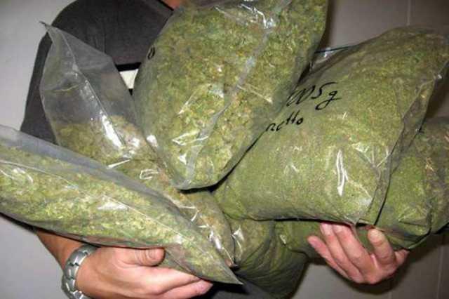 Detuvieron en Pergamino a un joven de Salto con más de medio kilo de marihuana