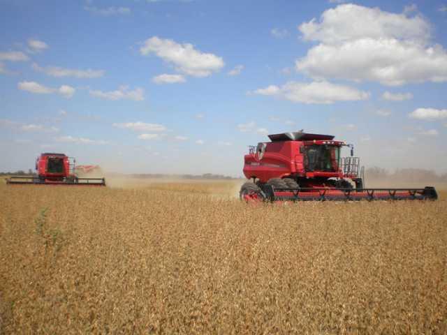 Los costos de los alquileres y la caída de precios de granos afectarán el nuevo año agrícola