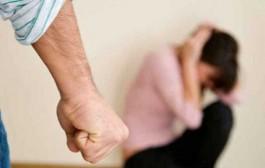 Ley de protección integral a las mujeres (Nacional Nº26485)