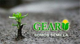 GEAR 001