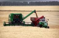 Provincia: incrementaron la tarifa para el transporte de cereales