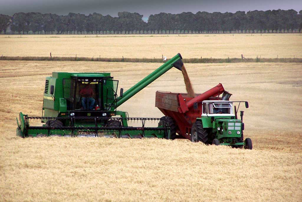 Las cerealeras prometieron una liquidación de 300 mill/dól diarios