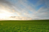Semana con pocas lluvias en el núcleo agrícola