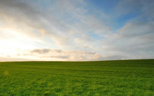 Provincia y Carbap analizaron aumentar productividad y seguridad rural
