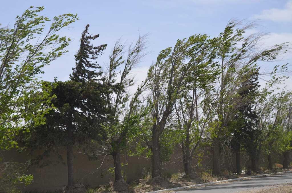 Alerta meteorológica en gran parte del territorio bonaerense por vientos fuertes