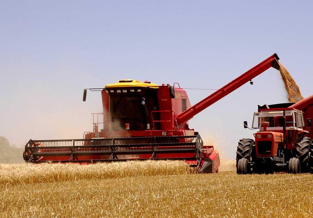 Por el impacto climático se deberán recortar las estimaciones productivas de maíz y soja