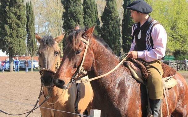 """Provincia analizó la implementación del """"DNI"""" equino y la prevención del abigeato"""