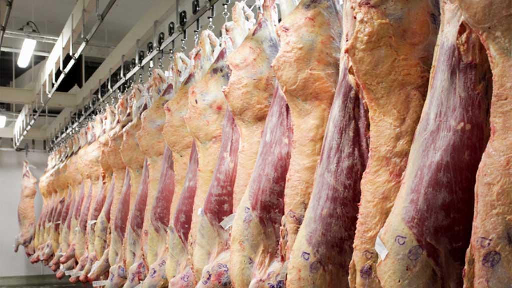 Las exportaciones de carne vacuna siguen en ascenso