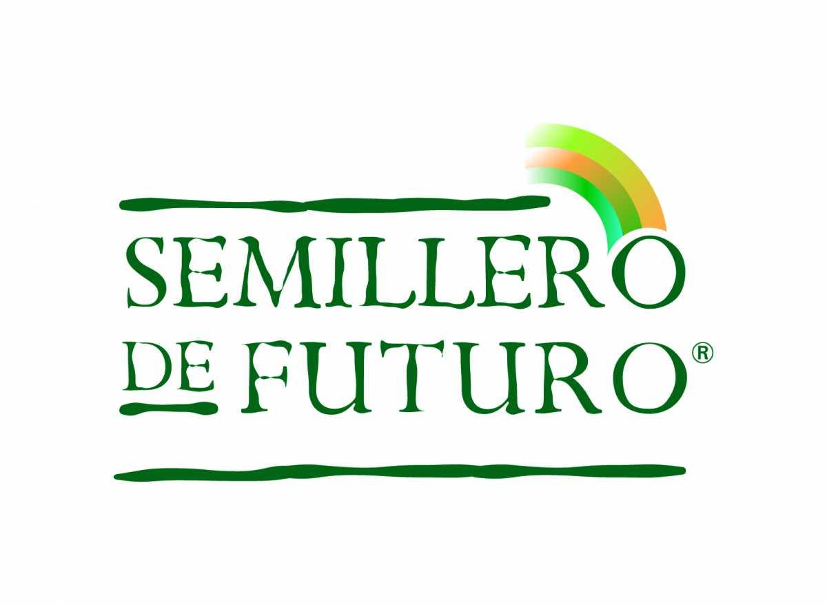 Semillero de Futuro:  Se definieron los 30 proyectos beneficiarios de la edición 2018