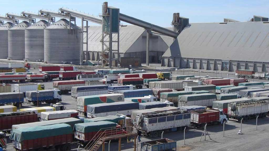 Fuerte despacho de camiones con soja en Rosario