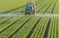 Fijan plazo de 90 días para regular el uso de agroquímicos en zonas urbanas
