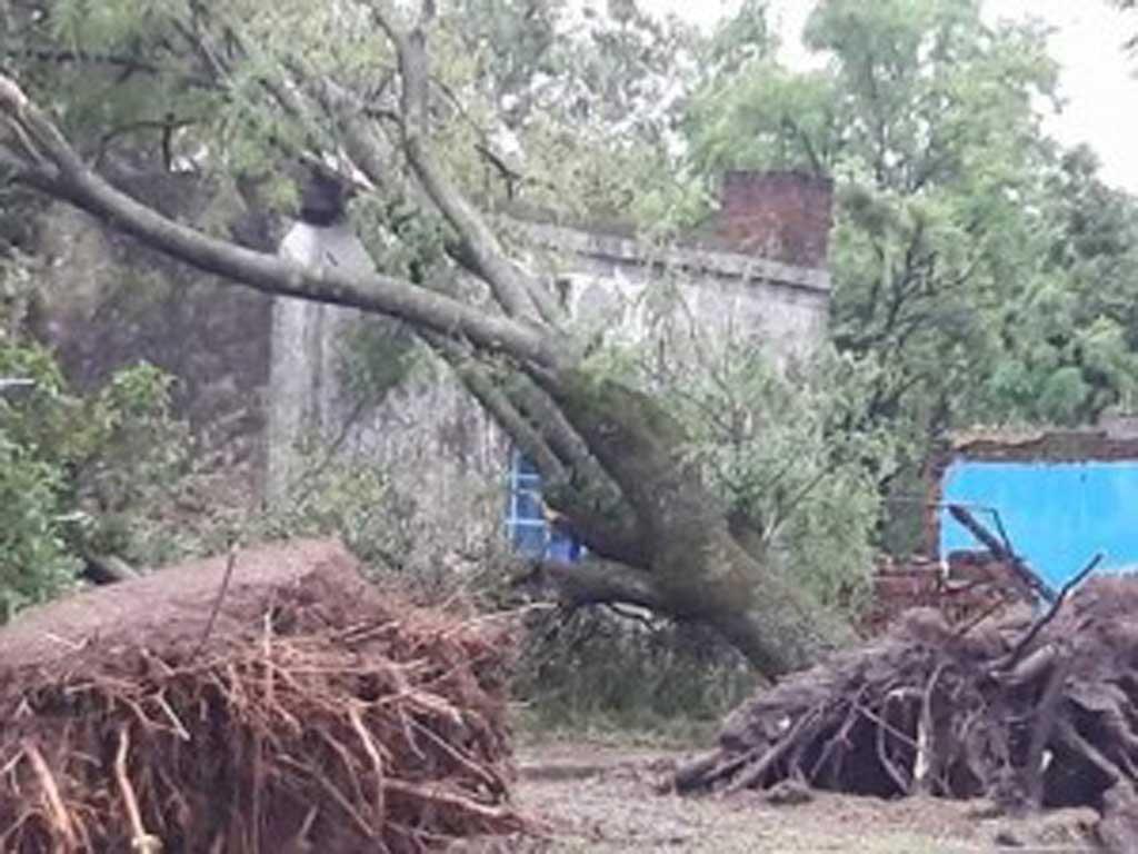 Fuerte tormenta azotó la ciudad de Vedia y provocó destrozos