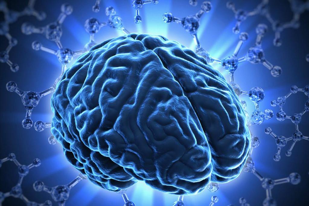 Curso de neurociencias y el aprendizaje motor