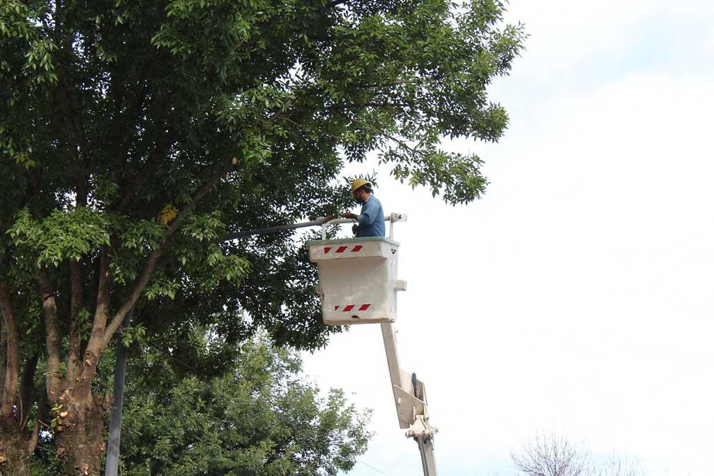 Continuan instalando luces led en el cuadro urbano