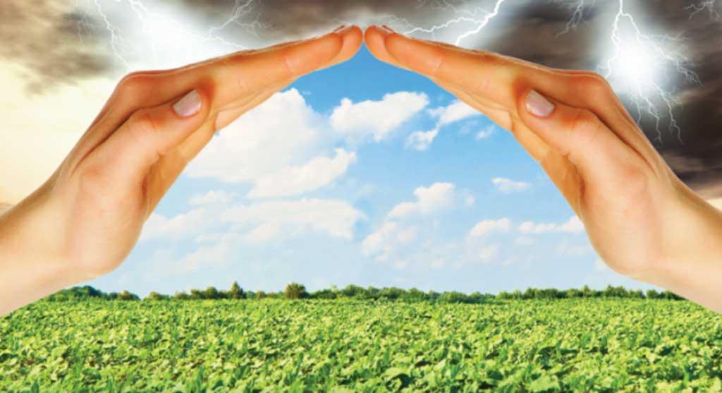 Se abrió el debate por los proyectos de seguros agrícolas