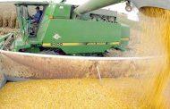 Agroindustria espera 130 mill/tn esta campaña y 150 mill/tn en 2019