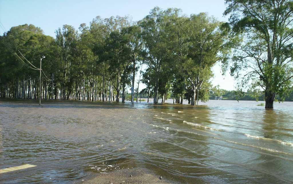 Crece la preocupación en Salto por la crecida del río