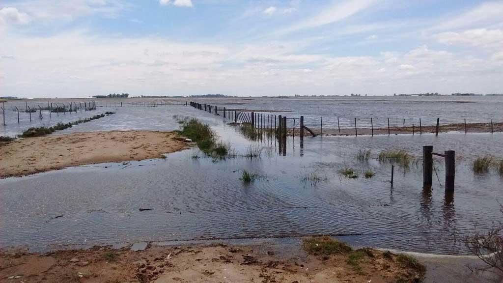 Obras para mitigar inundaciones sumarán dos millones de hectáreas productivas