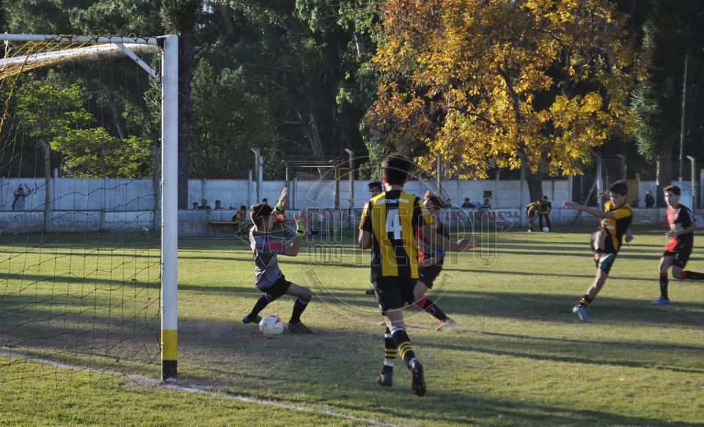 Fútbol: jornada con mucha actividad para inferiores y escuelitas