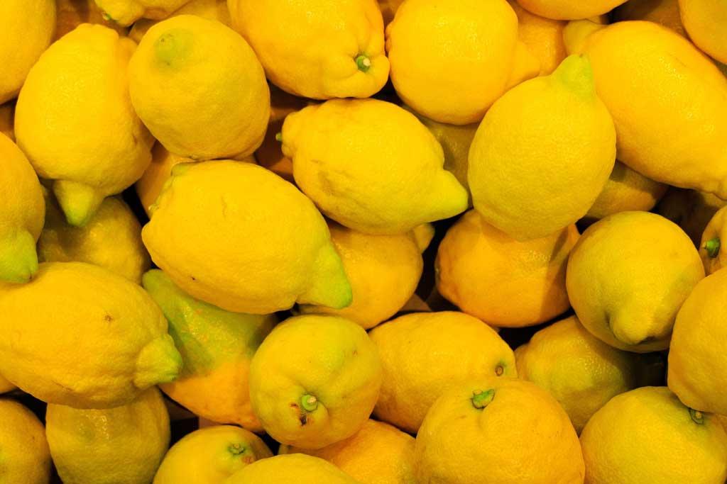 Los limones argentinos ingresarán a Estados Unidos a partir del 26 de mayo