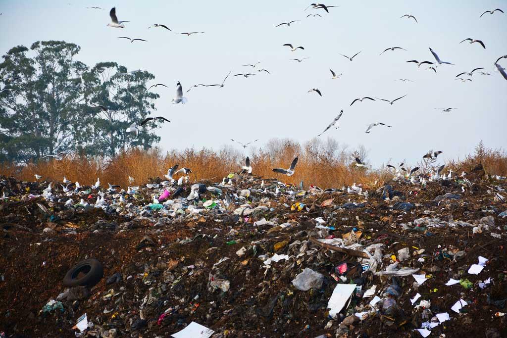 San Andrés de Giles cerrará basural a cielo abierto y llevará su residuos al Ceamse