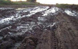 Productores lecheros reclaman la reparación de caminos rurales