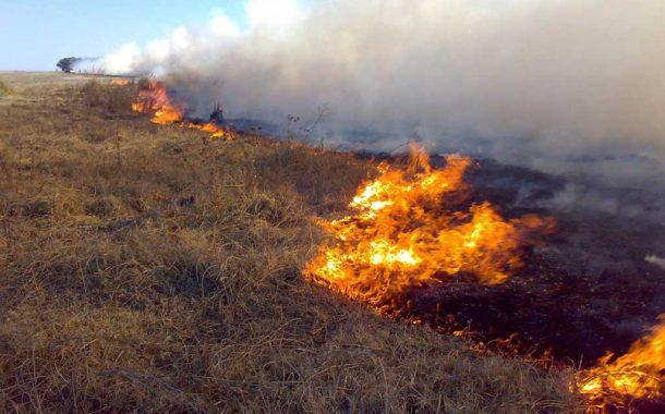 La Provincia emite recomendaciones para evitar incendios en zonas de riesgo