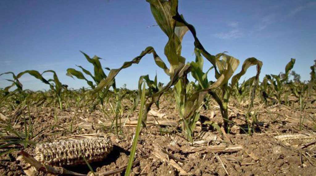 La sequía argentina puede afectar el crecimiento del PBI