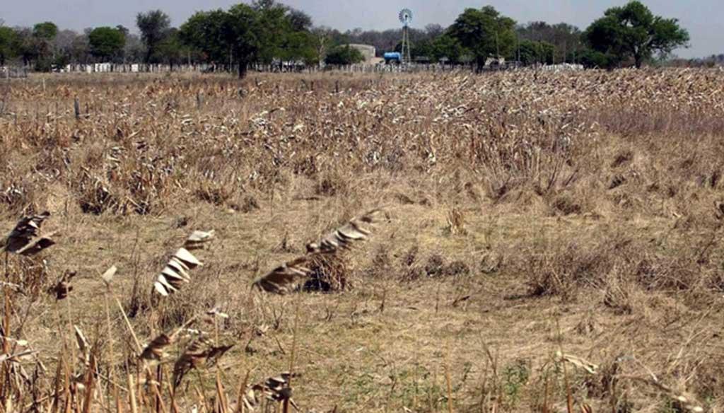 Sequía: oficializan la declaración de emergencia en otros 13 distritos