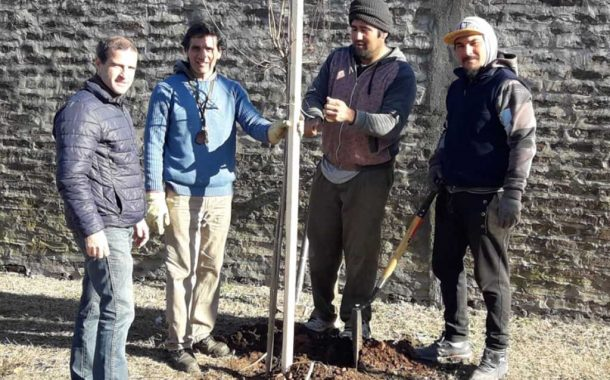 Realizaron nueva plantación de árboles