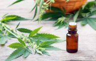 Uso del cannabis: jornada abierta a la comunidad