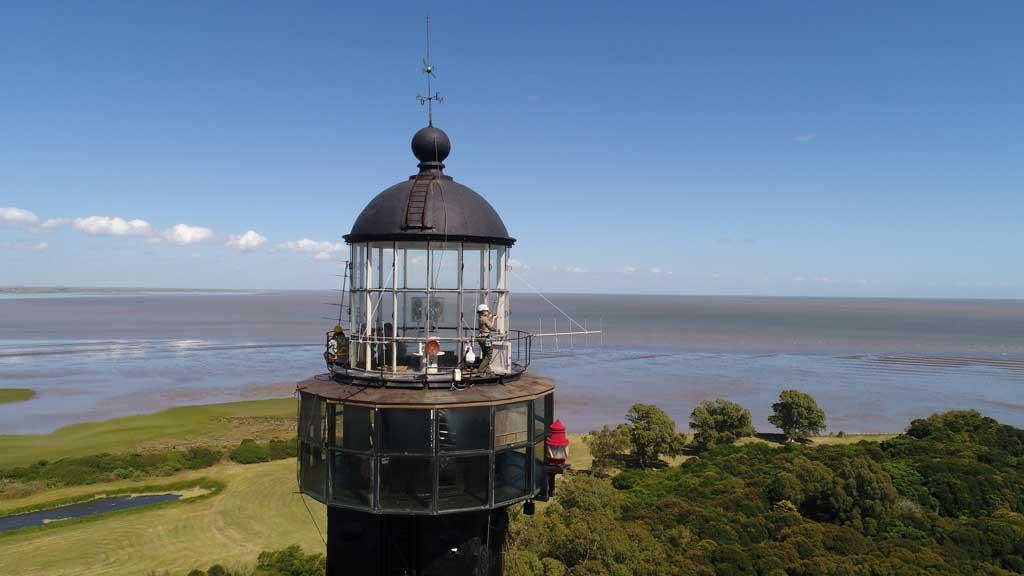 La Provincia instaló la primera estación de monitoreo de aves migratorias del país