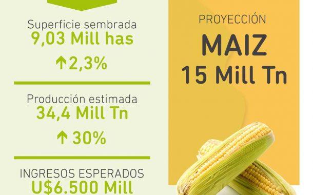 Prevén récord de cosecha gruesa con más de 9 millones de hectáreas
