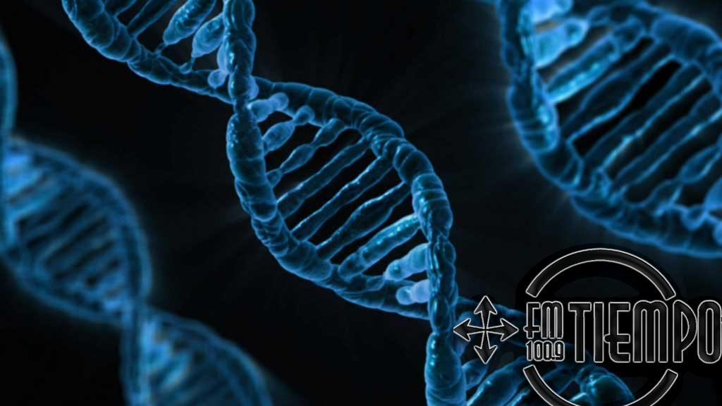 La UNNOBA dictará un Doctorado en Mejoramiento Genético
