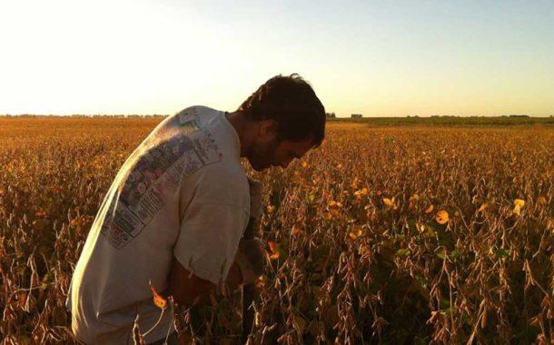Registran cuánto gas de efecto invernadero emiten los cultivos agrícolas