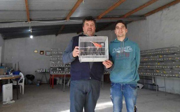 Se suspendió toda la actividad de la canaricultura por el presente año