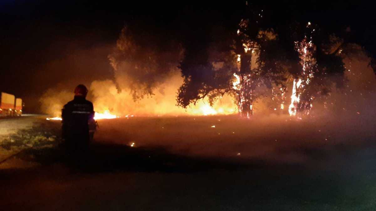 Los Bomberos Voluntarios debieron trabajar en 12 incendios, se cree que algunos fueron intencionales